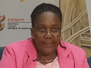 Transport minister Dipuo Peters has urged Sanral to remedy incorrect bills, but has said little else about the e-toll controversy.