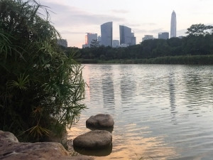 The world's fourth tallest building, the Ping An Finance Centre, is reflected in the water of Shenzhen's central park. The building is still under construction; when finished, it will stand 600m tall.
