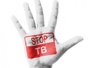 Hundreds of thousands of volunteers are expected to contribute vast computing resources to aid the 'Help Stop TB' project.