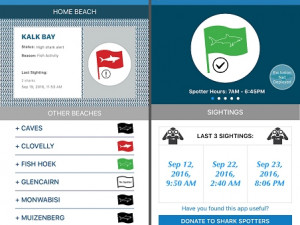 Cape Town beachgoers will be able to access essential safety tips and shark activity information on their smartphones.