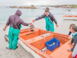 The app suite has the potential to impact 100 000 households dependent on SA's small-scale fisheries sector.