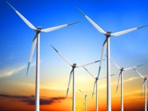 The Nojoli Wind Farm has a total installed capacity of 88MW.