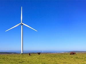 Kouga Wind Farm in the Eastern Cape.