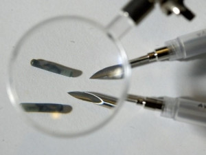 Tiny RFID chips will be implanted into the hands of Three Square Market staff.
