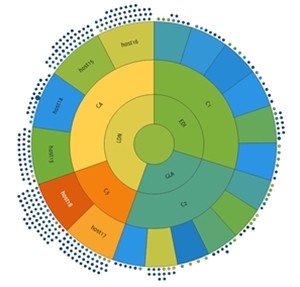 MentPro Capacity Planner.