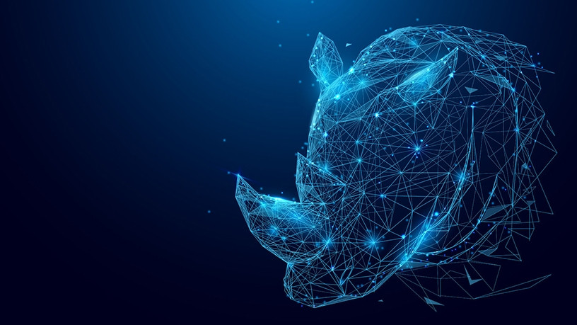 The project aims to fit 3 000 rhinos with sensors in their horns.
