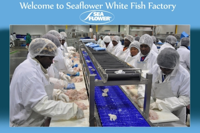 Seaflower White fish factory.