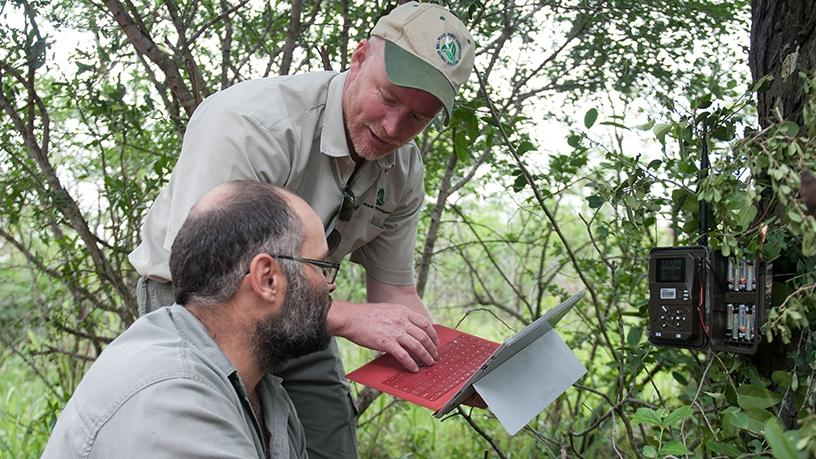 Douglas Gillings and Herman Stander installing AI-capable software on cameras in Hluhluwe-iMfolozi Park in KZN.