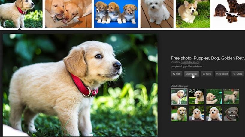 "A new Chrome extension re-implements the Google ""View Image"" and ""Search by Image"" buttons."