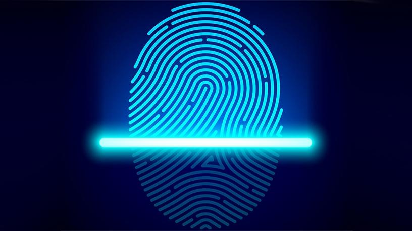 A biometric solution can capture fingerprint data from the skin's surface and subsurface for reliable matching.