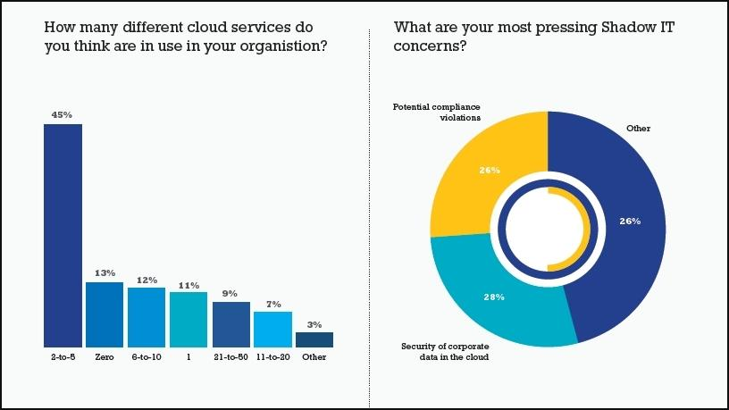 Local firms grapple to control use of cloud apps.