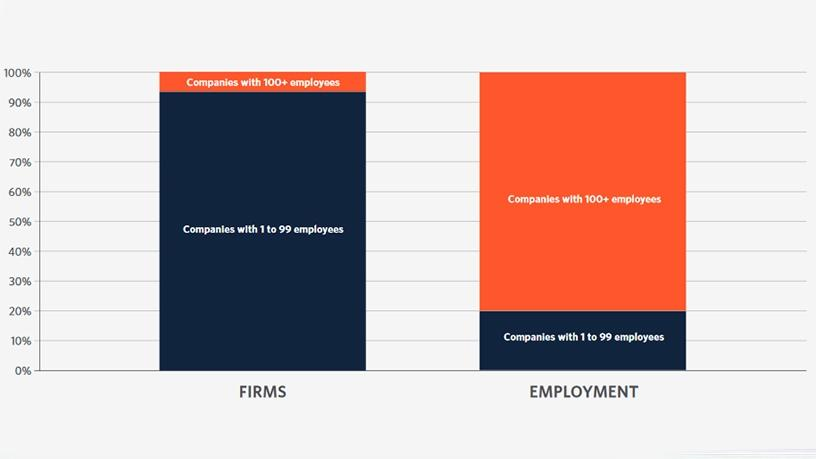 Employment contribution among Cape Town-based tech companies.