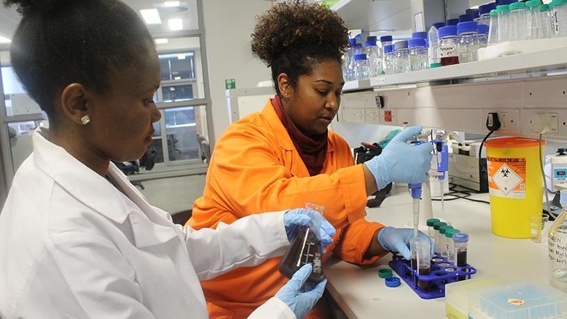 Biotech incubator seeks start-ups solving African challenges